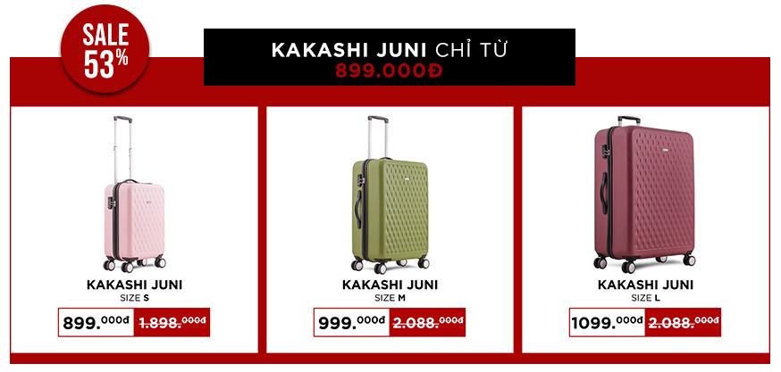 kakash-juni