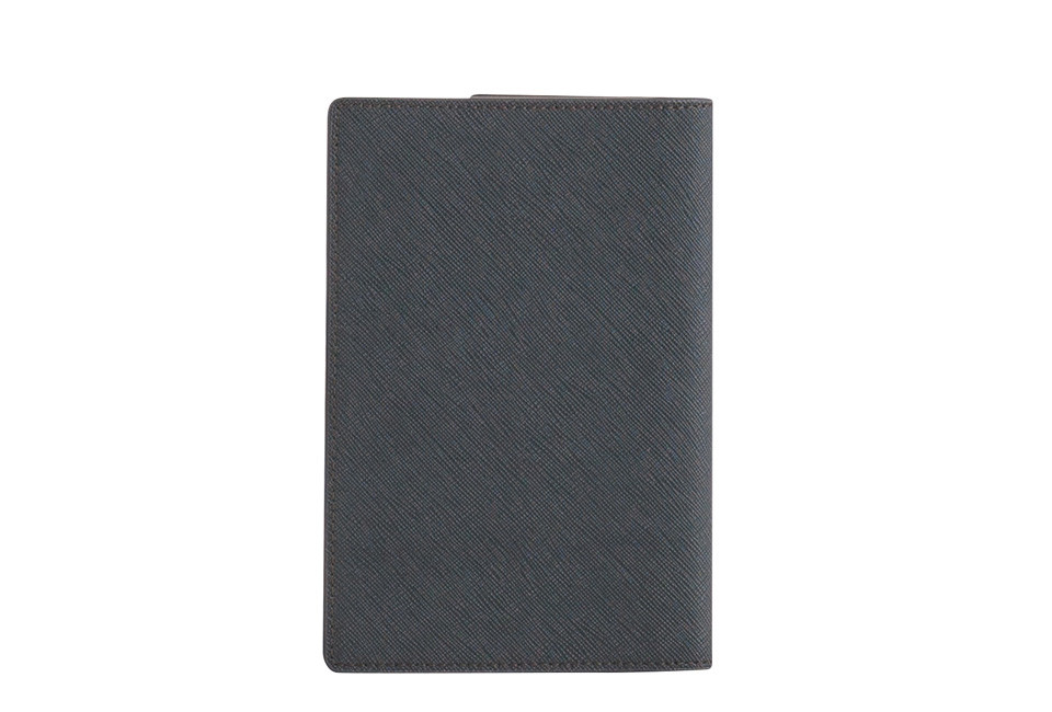 kakashi-shenda-passport-s-green2