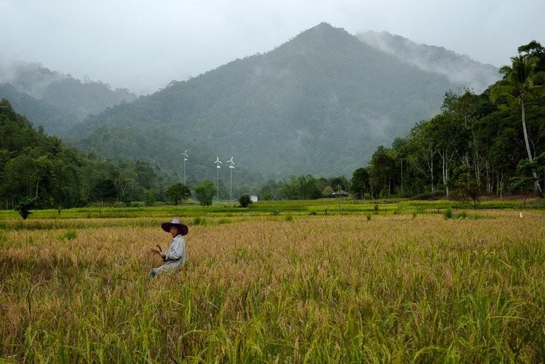 kham-pha-vung-dat-da-van-hoa-bang-sarawak-malaysia14