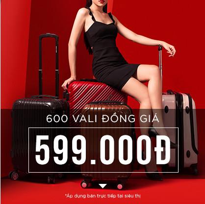 vali-dong-gia-599